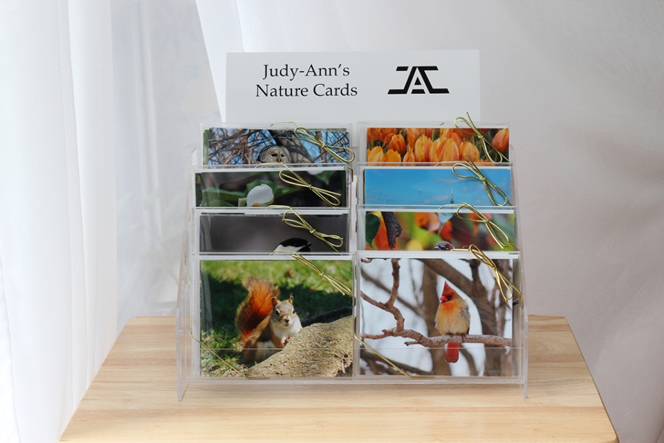 Judy-Ann's Nature Cards Display