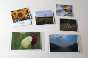 Judy-Ann Cazemier Photo Art Cards