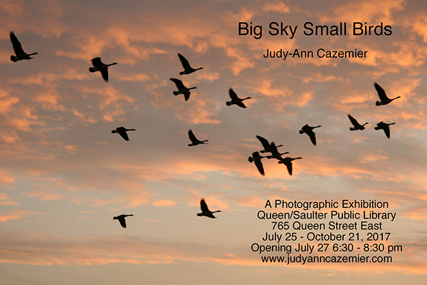 Big Sky Small Birds Evite