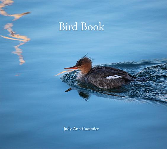 Bird-Book-Judy-Ann-Cazemier Cover